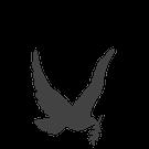 901 - Taube (3,7x4,2cm)