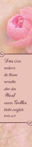 """PVC Lineal + Lesezeichen """"Verheißungen Gottes"""""""