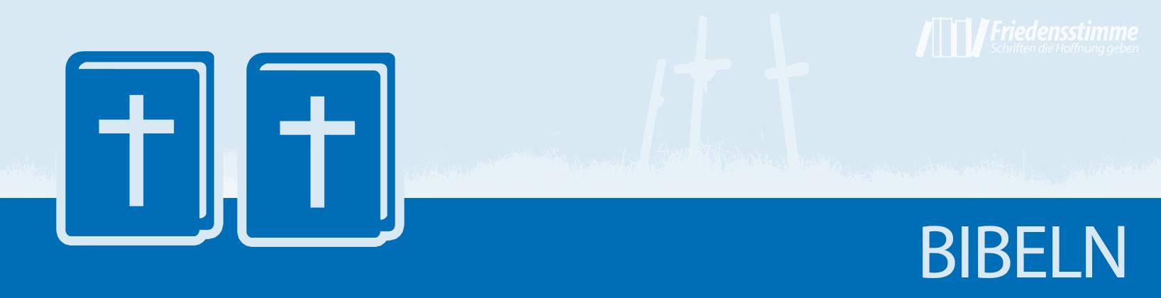 Banner_Kategorie_Bibel_01