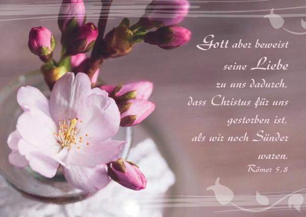Postkarte - Kirschblüte