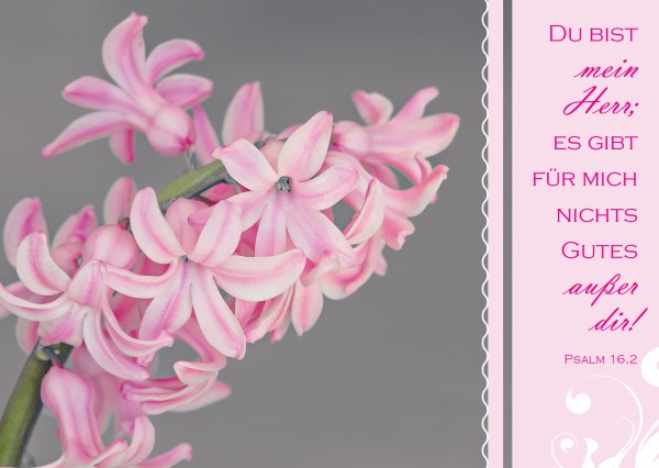 """Postkarte """"rosa Blume"""""""