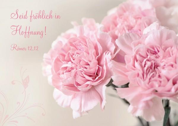 """Postkarte """"rosa Nelken"""""""