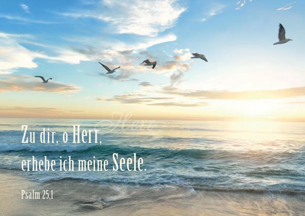 Postkarte - Meer