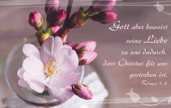 Minikalender 2020 - Kirschblüte