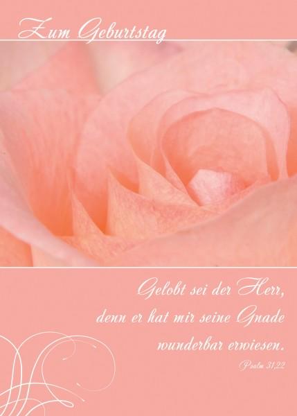 """Postkarte""""Rose"""""""