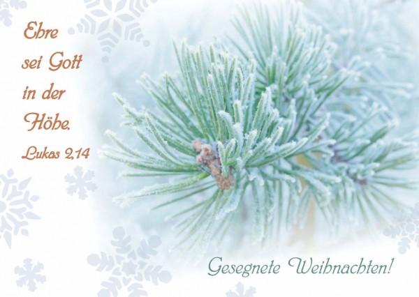 """Postkarte """"Tannenzweig"""" Gesegnete Weihnachten!"""