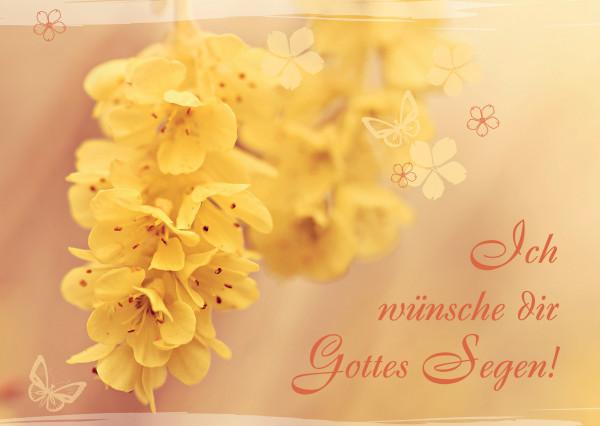 Postkarte - Gelbe Blume
