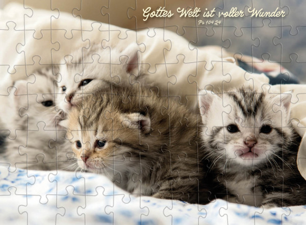 Puzzle-Cup - Katzenmotiv